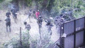 Tensioni in Valle di Susa durante il corteo No Tav, agente ferito con una bomba carta