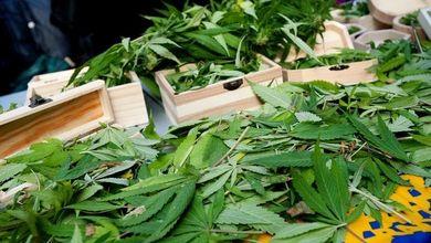 È ora di legalizzare le droghe