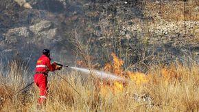 Incendi, brucia il Palermitano: canadair in azione