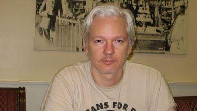 Assange: 'Io, la politica e Grillo'