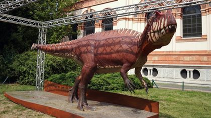 Un dinosauro Saltriovenator a grandezza naturale: la nuova installazione permanente ai Giardini Montanelli