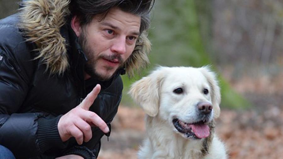 I cani capiscono quello che gli diciamo: ecco la prova scientifica