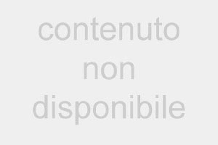 FridaysForFuture a Milano, in Duomo brucia il mondo di cartapesta