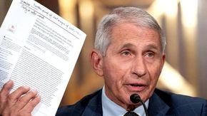 """Covid, Fauci elogia l'Italia: """"Meglio degli Usa, il Paese è diventato esempio nel mondo"""""""
