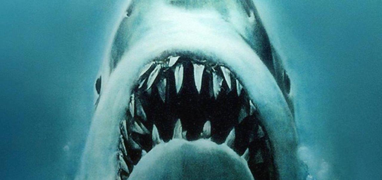profitto bitcoin vasca degli squali del messico)