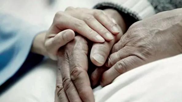 """Trieste, dopo 55 anni insieme coppia sceglie il suicidio assistito. La Diocesi: """"Un anti-messaggio che umilia chi si prodiga per la vita"""""""