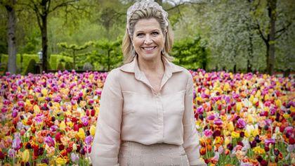 Maxima d'Olanda: i 50 anni della regina che non sbaglia un look