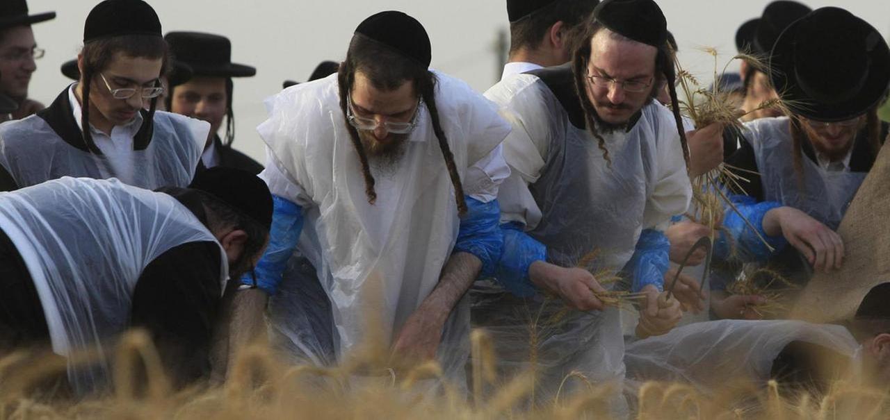 Judíos Ortodoxos Contra Los Judíos Mesiánicos La Stampa