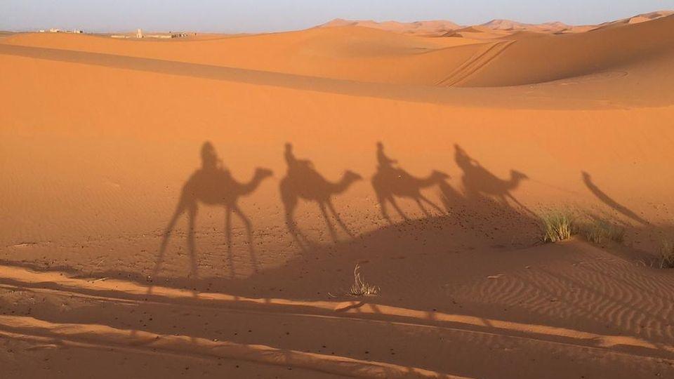 Il deserto del Sahara diventa più grande giorno dopo giorno - La ...