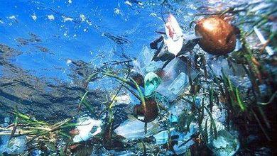 Addio plastica usa e getta. Ma l'Italia protesta contro le linee guida dell'Ue