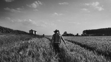 Viaggio in Emilia, terra di frontiera, dove la sinistra ha dissipato il suo patrimonio
