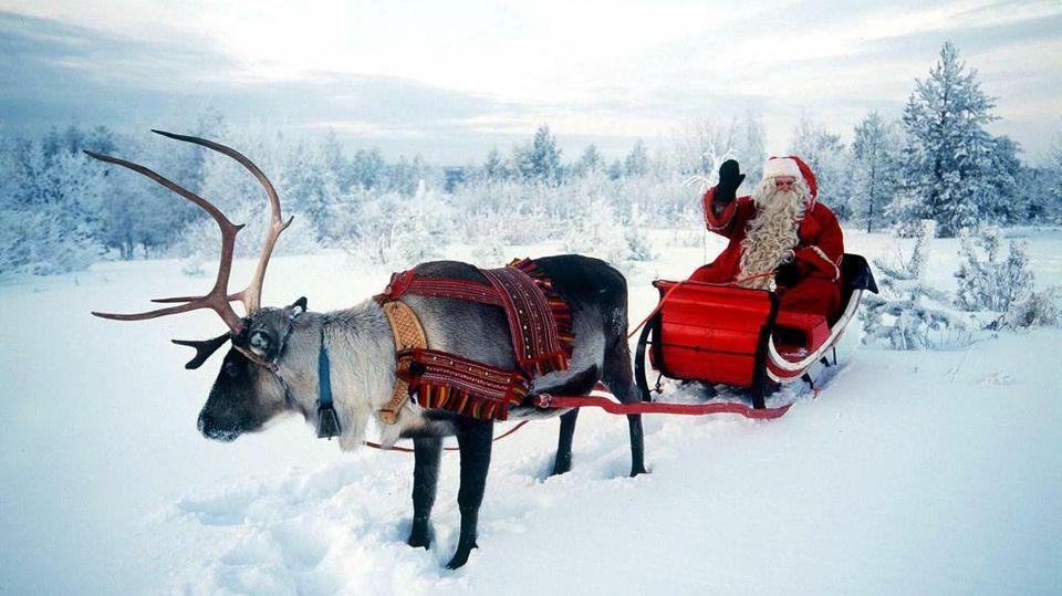 Babbo Natale In Spagnolo.Femmine O Maschi Svelato Il Mistero Sulle Renne Di Babbo