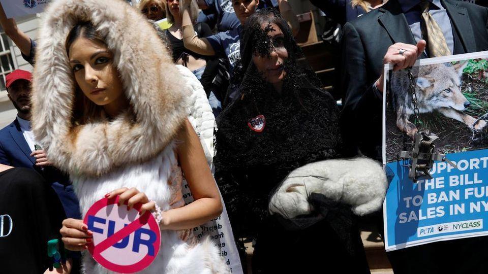 buy popular 0692d 21879 New York si spacca sul divieto di vendita delle pellicce ...