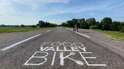 Food valley bike: da Parma a Busseto 80 km di natura, sapori e cultura a portata di bici
