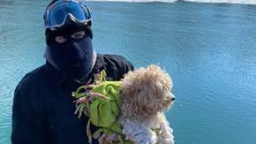 Il cane bloccato sul fiume ghiacciato per quattro giorni viene adottato dal soccorritore