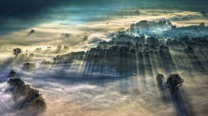 """Giulio Montini è il miglior """"fotografo del tempo"""": il suo scatto della nebbia mattutina ad Airuno premiato dalla Royal Meteorological Society"""