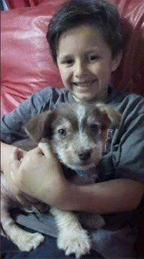 At 7, Nicolás confronts a group of bullies who were beating a puppy dog -  Ruetir