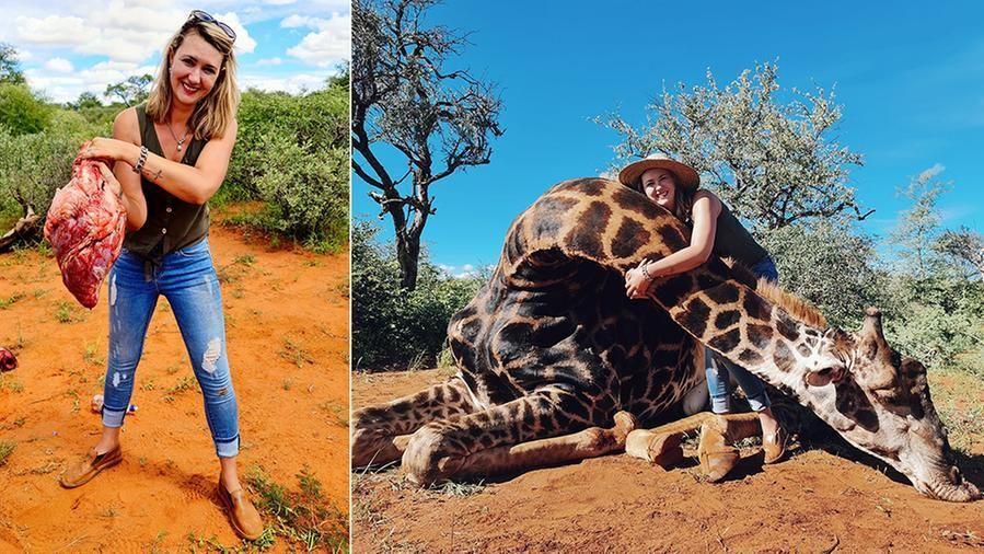 une chasseuse tue une girafe et montre son cœur