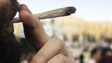 È il momento di regolarizzare la cannabis