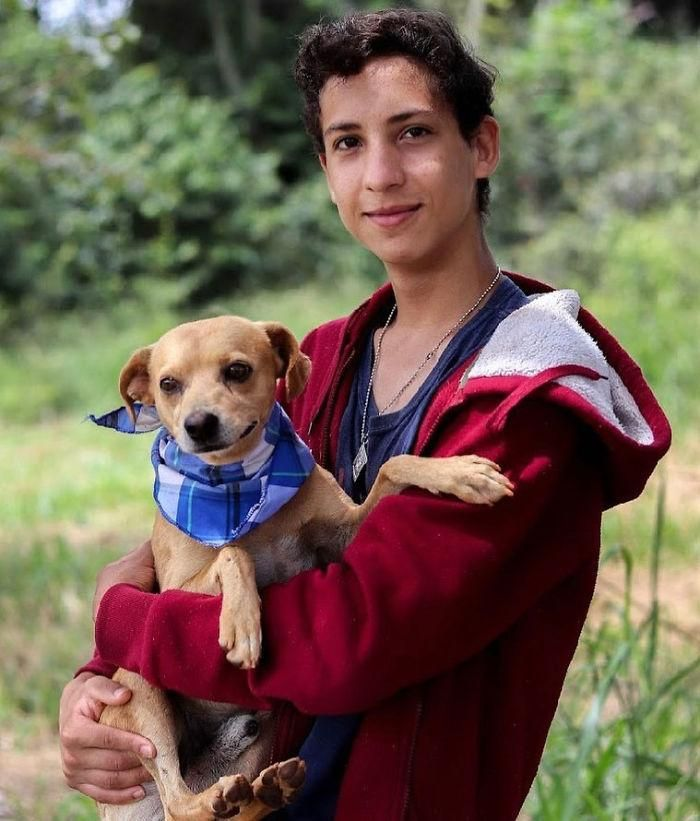 A 17-year-old boy opens a special animal shelter and has already saved 22 dogs and 4 cats