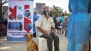 A grandfather goes to get vaccinated against Covid, his faithful dog at his side
