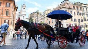 Ferma botti per strada a Roma, funziona solo in ville e parchi. Attivisti per i diritti degli animali: è mancato il coraggio di cancellarli