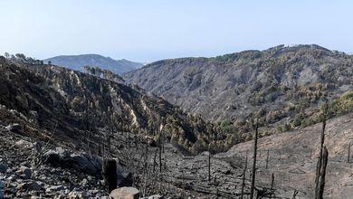 In Italia è record di incendi. Ma la politica preferisce vivere di emergenze e ignorare la prevenzione
