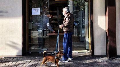 """Sorpresa, Napoli è """"dog friendly"""": prima in Europa per attenzione alle deiezioni"""