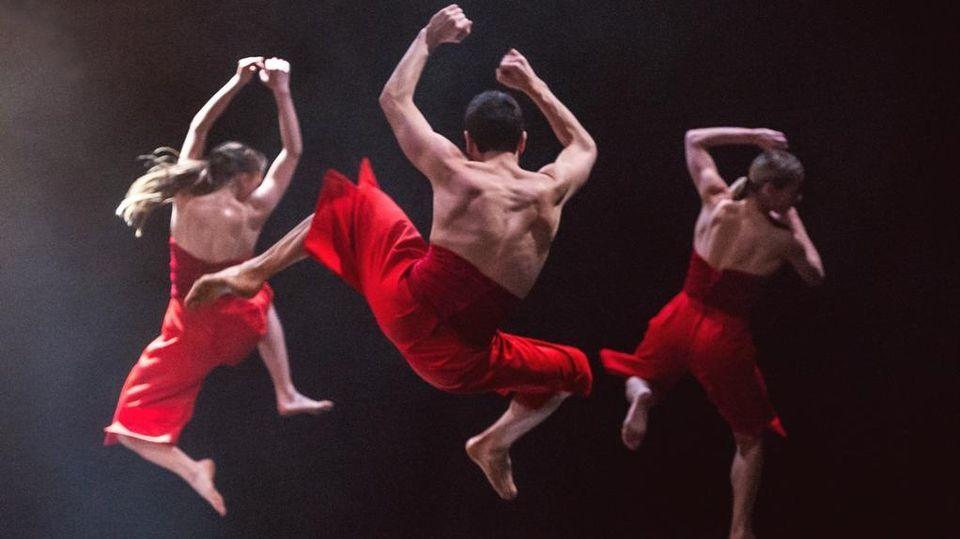 balletto ballerini sito di incontri come si fa a collegare un contatore amp