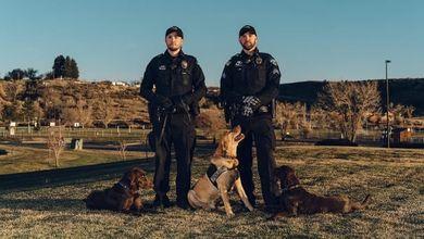 Cani poliziotto addestrati per attaccare i neri: lo scandalo che investe gli Usa