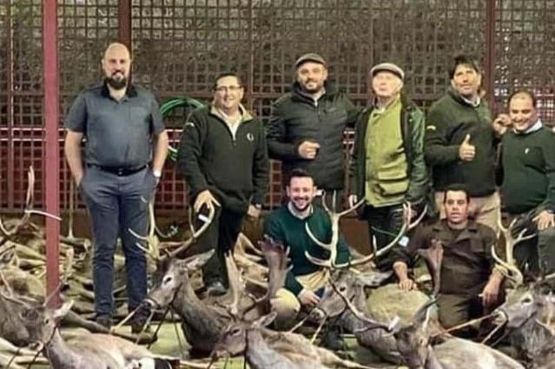 """In Portogallo 16 cacciatori spagnoli uccidono 540 cervi e cinghiali, una strage che ha scatenato l'ira del governo: """"E' un crimine ambientale"""""""