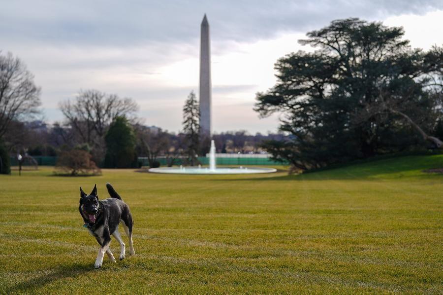 Major si gode il South Lawn della Casa Bianca (Foto credit:Adam Schultz)