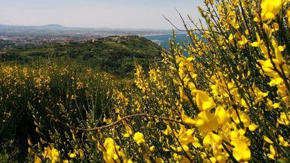 Fiorenzuola, le immagini del Parco Naturale del San Bartolo