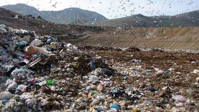 «La camorra sversava i rifiuti a Malagrotta». Il pentito attacca Cerroni