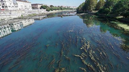 Se questo è un fiume: così la siccità si è portata via il Po nel centro di Torino