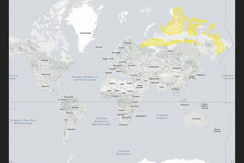 Cartina Muta Mondo Grande.Le Mappe Ingannano Quanto E Davvero Grande La Groenlandia Scoprilo Con L Interattivo La Repubblica