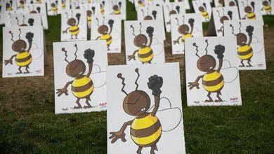 La strage delle api che mette in pericolo tutta la catena alimentare