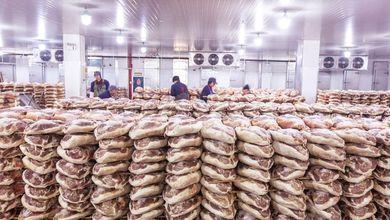 L'allarme della Fao: chi specula sul cibo mette milioni di affamati nelle mani di un algoritmo