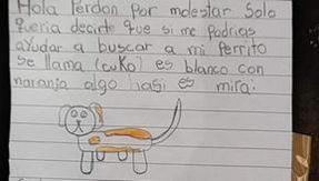"""""""Aiutatemi a ritrovare il mio cane Cuko, offro due euro di ricompensa"""", la lettera di una bambina intenerisce il web"""