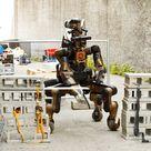 Ecco Centauro, il robot per le emergenze dell'Iit
