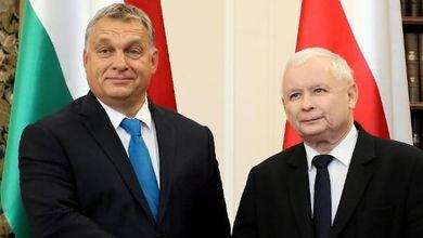 """""""Senza lo Stato di diritto non esiste l'Europa. E ora andiamo alla resa dei conti con Ungheria e Polonia"""""""