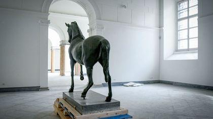 Napoli, così al Mann rinascono la quadriga di Ercolano e le statue della Campania romana