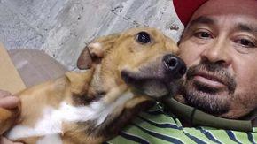L'uomo che salva i cani in Messico: uno lo ha morso, ma lui non si è arreso