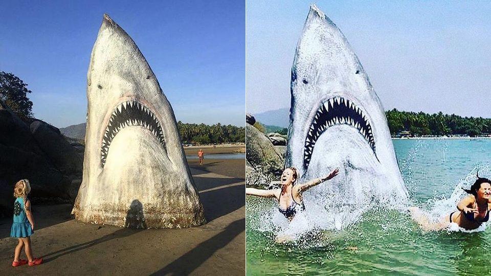 """C'è un enorme """"squalo bianco"""" che spunta da una spiaggia indiana"""