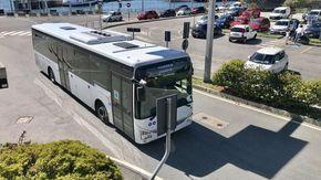 Vco Trasporti si rinnova e compra 12 nuovi bus