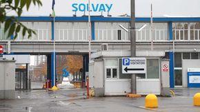 Ambiente: a Spinetta Marengo Solvay pianta 200 pioppi neri per assorbire C02