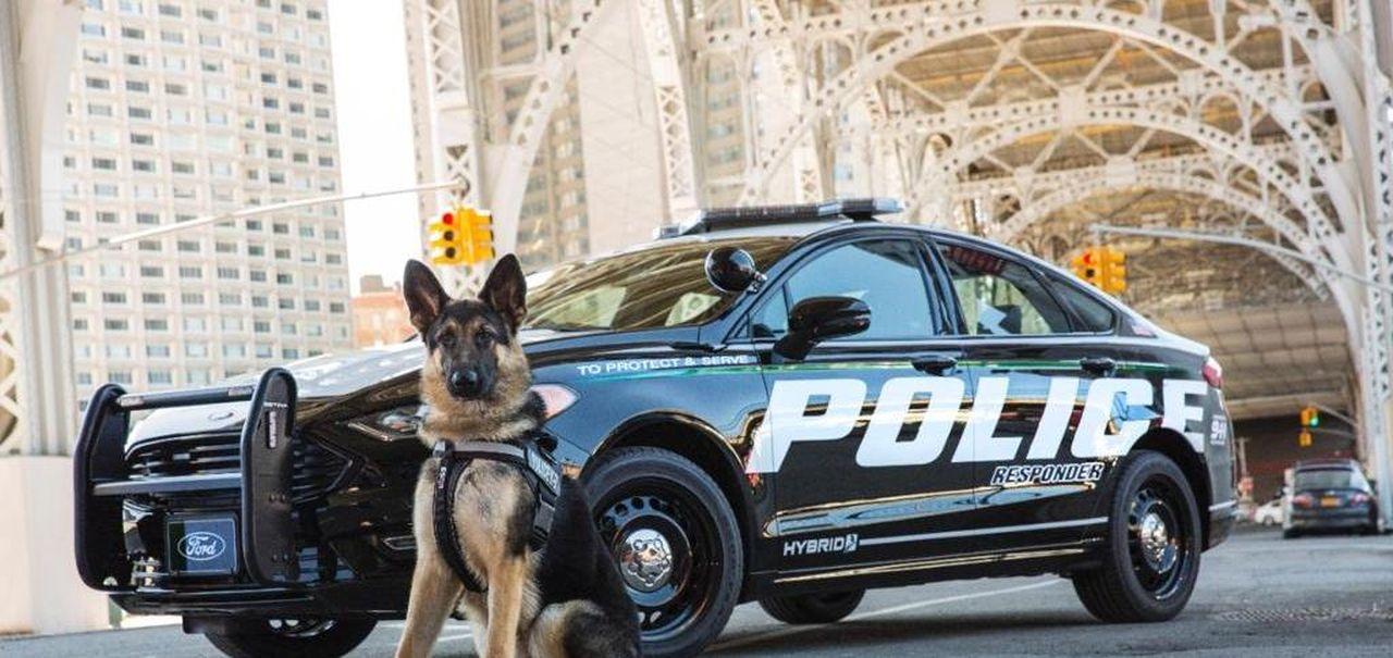 Ford Brevetta L Auto Della Polizia Intelligente Per Inseguimenti A Guida Autonoma La Stampa