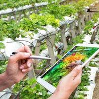 Produzione e trasformazione agricola: il progetto affinché abbia un impatto ambientale zero