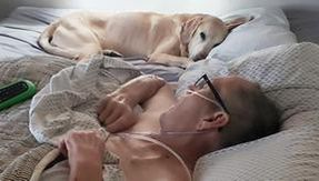 The owner and his faithful dog die within hours of each other: