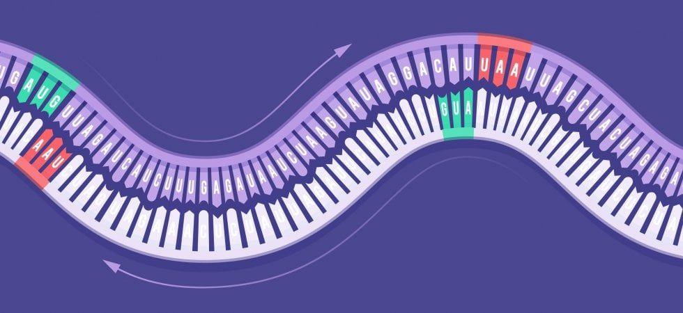 virus a doppio filamento
